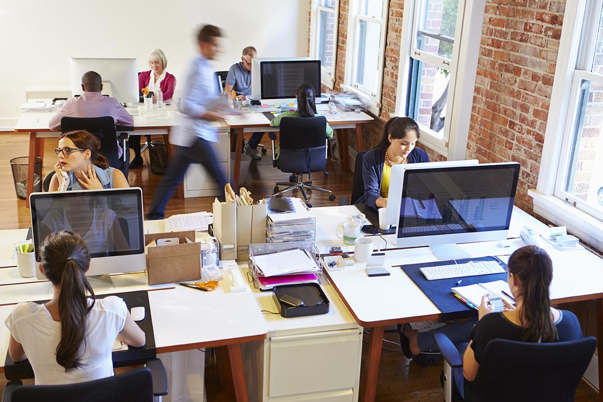 Graphics and Web development Studio